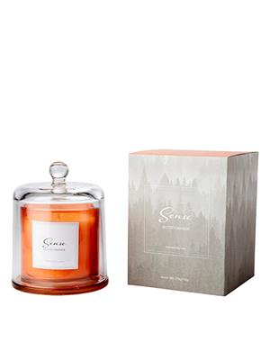 Sense A Luxurious Orange Blood Orange Scented Candle